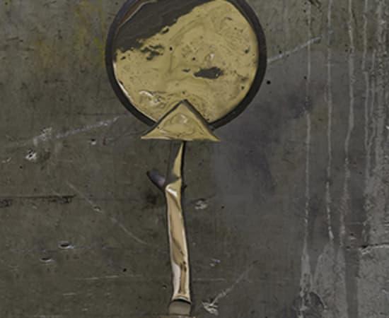 Joost van Bleiswijk, Civilised primitives - Mirror