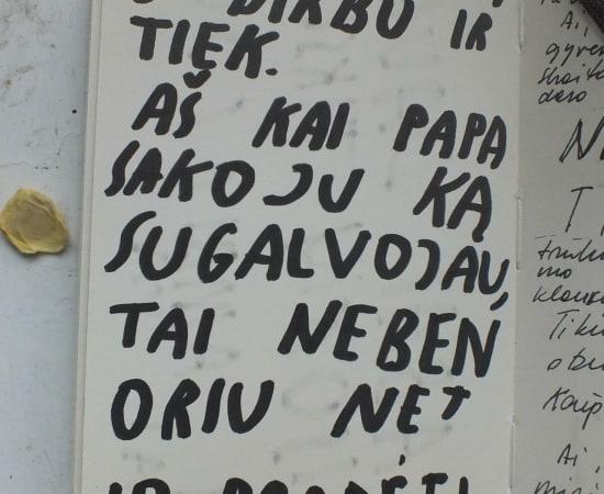 Ieva Rojūtė, Ne kritikai, o prisiminimui / Not for critics, but for remembrance, 2014