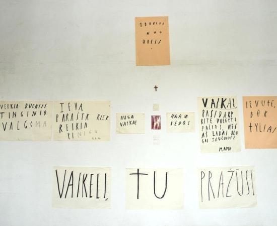 Ieva Rojūtė, VAIKELI TU PRAŽŪSI / MY DEAR CHILD, YOU'RE NOT GOING TO SURVIVE, 2012 - 2013
