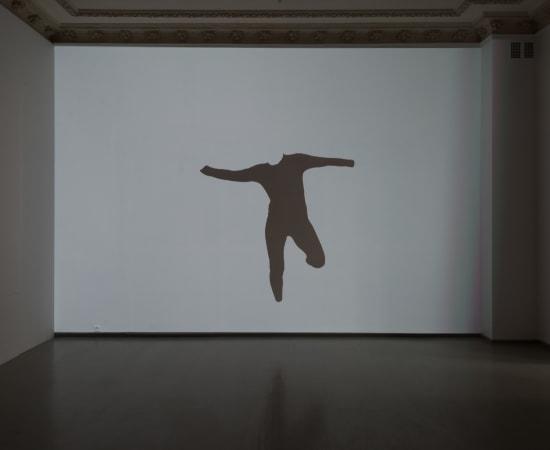 Jurga Barilaitė, Šokantis triko / A Dancing Unitard, 2017