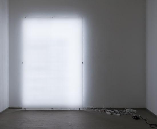 Ignas Krunglevičius, LCD stuburas / LCD spine, 2015