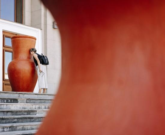 Mykola Ridnyi, Lost Baggage, 2019
