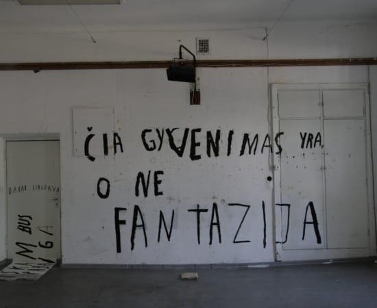 Ieva Rojūtė, ČIA GYVENIMAS YRA, O NE FANTAZIJA / THIS IS LIFE NOT A FANTASY, 2013