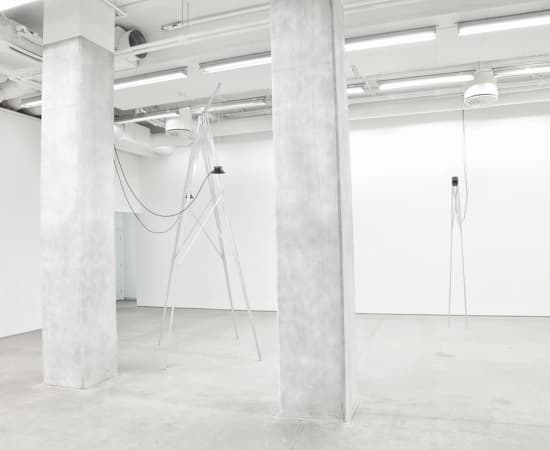 Ignas Krunglevičius, Compulsion to Repeat, 2017