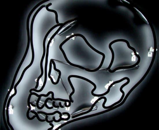 Anne Katrine Senstad, Black Warhol Neon Skull SM, 2009
