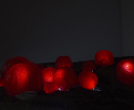 Leah Harper, Glowing Orbs, 2020