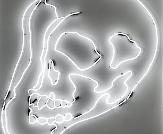 Anne Katrine Senstad, White Warhol Neon Skull SM, 2009