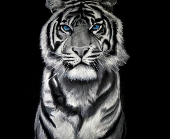 Will Mcnally, Tiger, 2019
