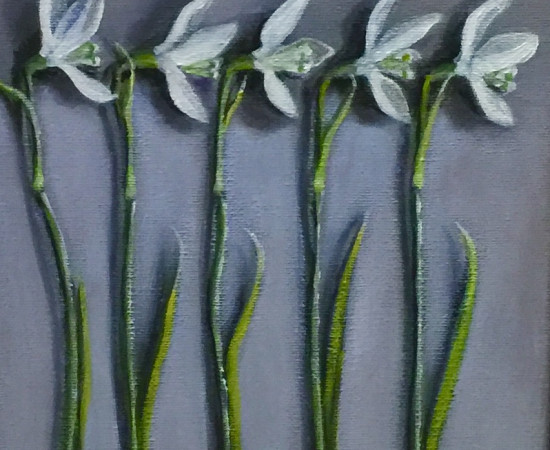 Joyce Pinch, Five Snowdrops