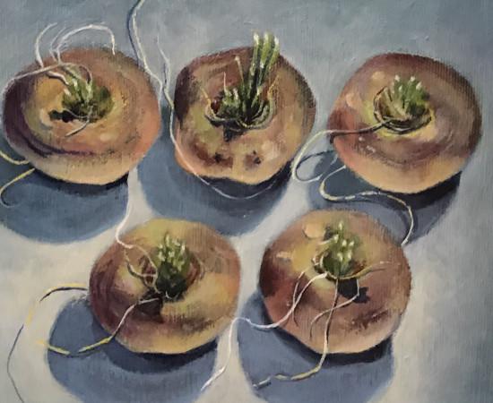 Joyce Pinch, Five Navets