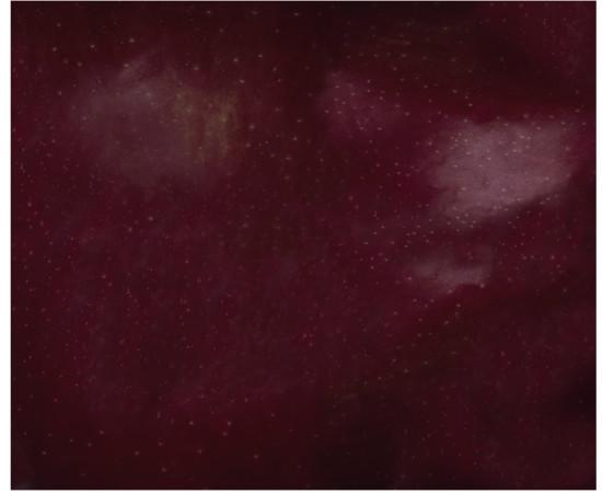 <span class=&#34;artist&#34;><strong>Brigitte Niedermair</strong></span>, <span class=&#34;title&#34;><em>Eden</em>, 2012</span>