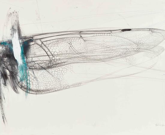 <span class=&#34;artist&#34;><strong>Lanfranco Quadrio</strong></span>, <span class=&#34;title&#34;><em>Ala di libellula</em>, 2016</span>