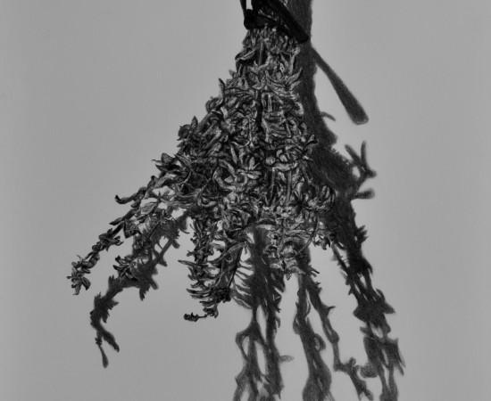 <span class=&#34;artist&#34;><strong>Samah Shihadi</strong></span>, <span class=&#34;title&#34;><em>Hanging Series </em>, 2018 </span>
