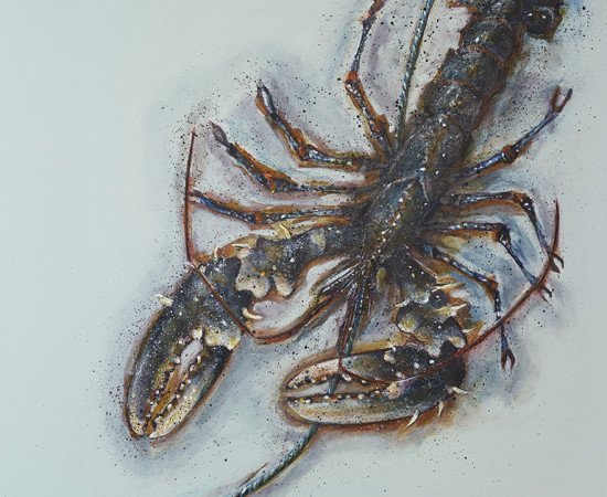 <span class=&#34;artist&#34;><strong>Caroline Cleave</strong><span class=&#34;artist_comma&#34;>, </span></span><span class=&#34;title&#34;>'Free Flowing' Port Isaac Lobster</span>