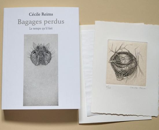 Cécile Reims, Bagages perdus, 2018