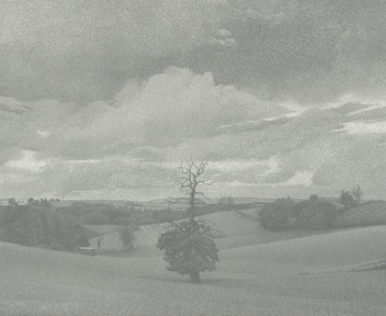Jean-Michel Bacquet, L'Arbre de Gaspard, nuages de septembre , 2017