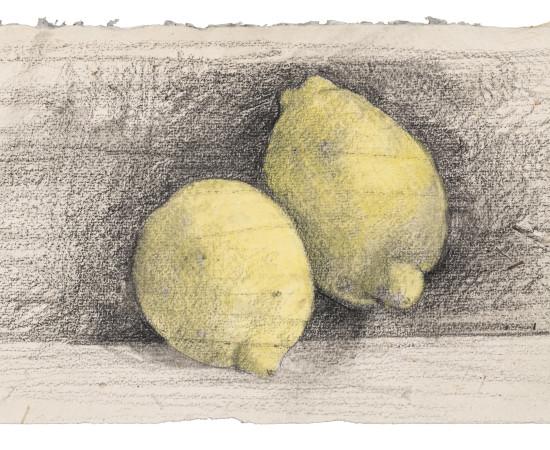 Farhad Ostovani, Jeux de citrons (#6), 2019