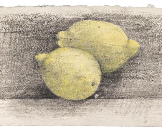 Farhad Ostovani, Jeux de citrons (#2), 2019