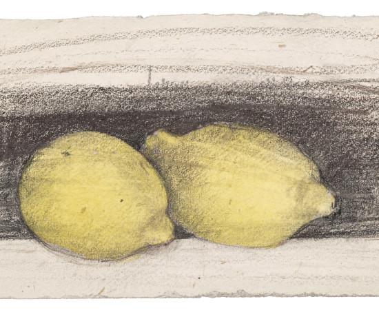 Farhad Ostovani, Jeux de citrons (#3), 2019
