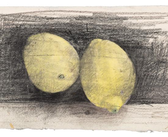 Farhad Ostovani, Jeux de citrons (#1), 2019