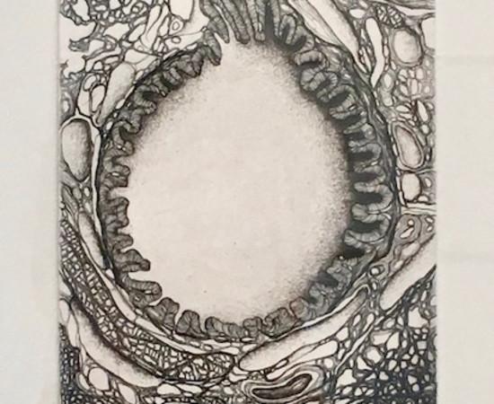 Cécile Reims, D'un Lointain passé - Gravure #3, 1995, édition en 2017