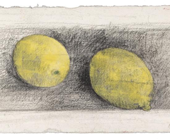 Farhad Ostovani, Jeux de citrons (#4), 2019