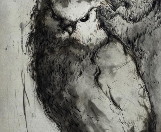 "Marjan Seyedin, ""Hiboux et chouettes"" #9, 2019"