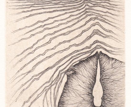 Cécile Reims, Paysages anatomiques - Gravure #18, 1995-2000, édition en 2017