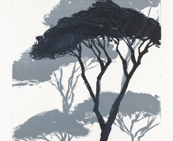 Astrid de La Forest, Les Grands pins, 2019