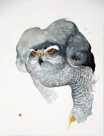 """<span class=""""artist""""><strong>Karl Martens</strong></span>, <span class=""""title""""><em>Goshawk</em></span>"""