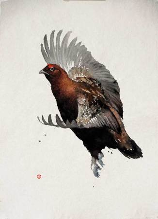 """<span class=""""artist""""><strong>Karl Martens</strong></span>, <span class=""""title""""><em>Red Grouse Flying</em></span>"""