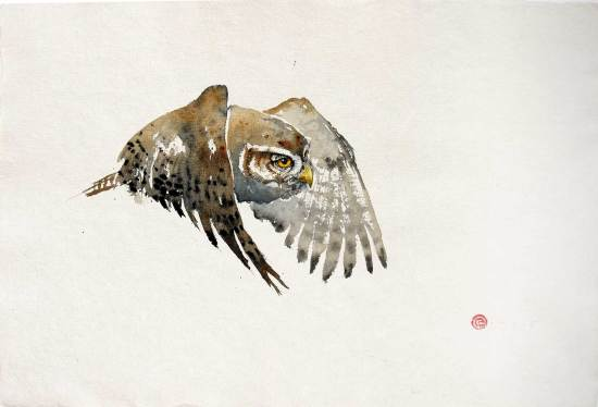 "<span class=""artist""><strong>Karl Martens</strong></span>, <span class=""title""><em>Pygmy Owl</em></span>"