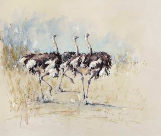 "<span class=""artist""><strong>Julia Cassels</strong></span>, <span class=""title""><em>Ostriches Three</em></span>"