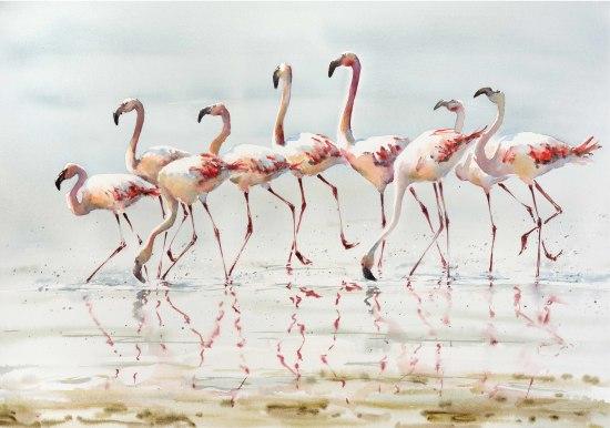 "<span class=""artist""><strong>Julia Cassels</strong></span>, <span class=""title""><em>March of the Flamingos</em></span>"