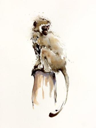 """<span class=""""artist""""><strong>Julia Cassels</strong></span>, <span class=""""title""""><em>Monkey Days</em></span>"""
