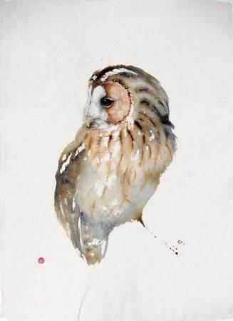 "<span class=""artist""><strong>Karl Martens</strong></span>, <span class=""title""><em>Tawny Owl</em></span>"