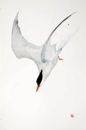 "<span class=""artist""><strong>Karl Martens</strong></span>, <span class=""title""><em>Arctic Tern</em></span>"