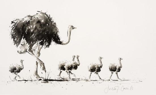 """<span class=""""artist""""><strong>Julia Cassels</strong></span>, <span class=""""title""""><em>Ostrich Footsteps</em></span>"""