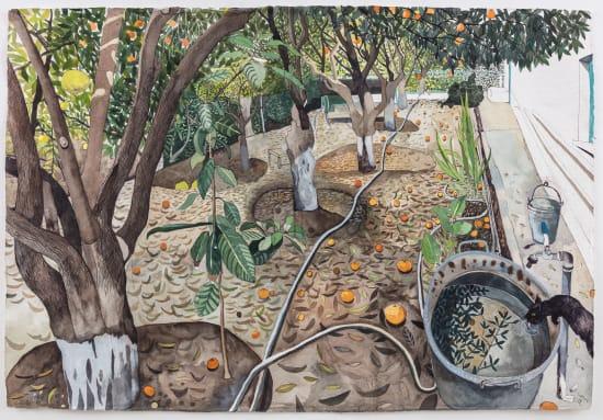 Sophie Charalambous, December Windfalls in Memo's Garden, 2019