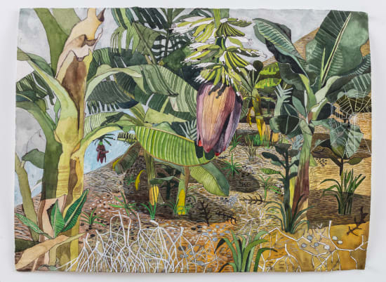Sophie Charalambous, Banana Grove, 2020