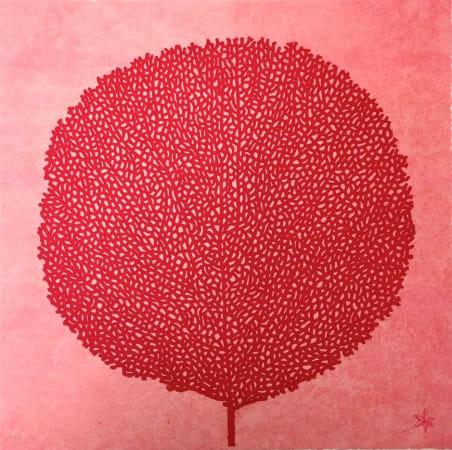 Abigail McLellan, Small Pink Seafan, 2002