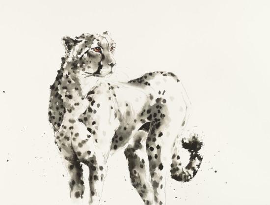 """<span class=""""artist""""><strong>Julia Cassels</strong></span>, <span class=""""title""""><em>Cheetah</em></span>"""