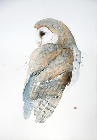"""<span class=""""artist""""><strong>Karl Martens</strong></span>, <span class=""""title""""><em>Barn Owl (Unframed)</em></span>"""