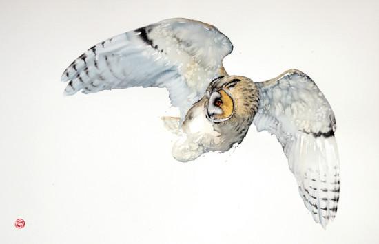 "<span class=""artist""><strong>Karl Martens</strong></span>, <span class=""title""><em>Long Eared Owl Flying (Unframed)</em></span>"