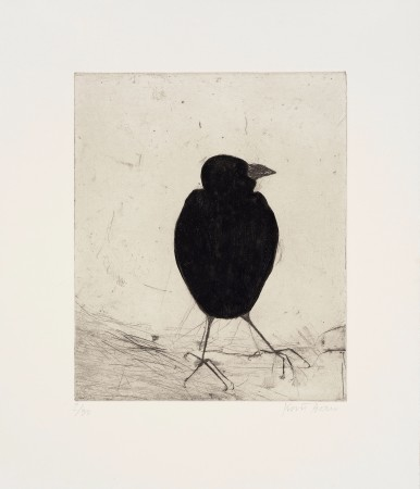 <span class=&#34;artist&#34;><strong>Kate Boxer</strong></span>, <span class=&#34;title&#34;><em>Jackdaw (Framed)</em></span>