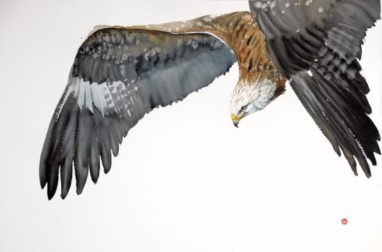 "<span class=""artist""><strong>Karl Martens</strong></span>, <span class=""title""><em>Red Kite Flying II (Unframed)</em></span>"