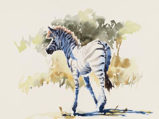 """<span class=""""artist""""><strong>Julia Cassels</strong></span>, <span class=""""title""""><em>Zebra Light</em></span>"""