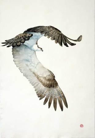 """<span class=""""artist""""><strong>Karl Martens</strong></span>, <span class=""""title""""><em>Osprey</em></span>"""