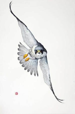 "<span class=""artist""><strong>Karl Martens</strong></span>, <span class=""title""><em>Peregrin Falcon</em></span>"