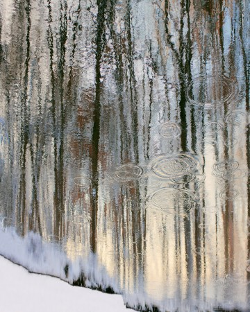 <div class=&#34;artist&#34;><strong>Kate Cordsen</strong></div><div class=&#34;title&#34;><em>Ravine 1</em>, 2012</div><div class=&#34;medium&#34;>c-type print</div><div class=&#34;dimensions&#34;>40 x 50 in.</div>